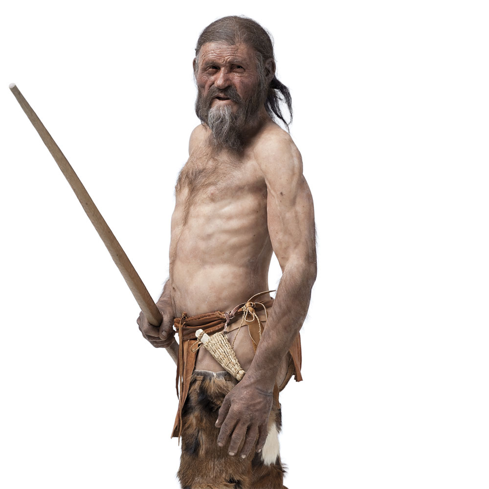 tzi the iceman information and Ötzi (german pronunciation:  an aa cried the iceman, the similaun man, the man frae hauslabjoch, the tyrolean iceman, an the hauslabjoch.