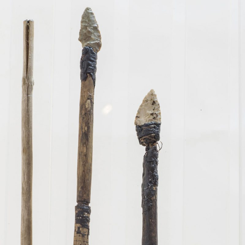 (c) South Tyrol Museum of Archaeology/wisthaler.com